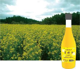 菜の花畑の写真と菜種油のパッケージ
